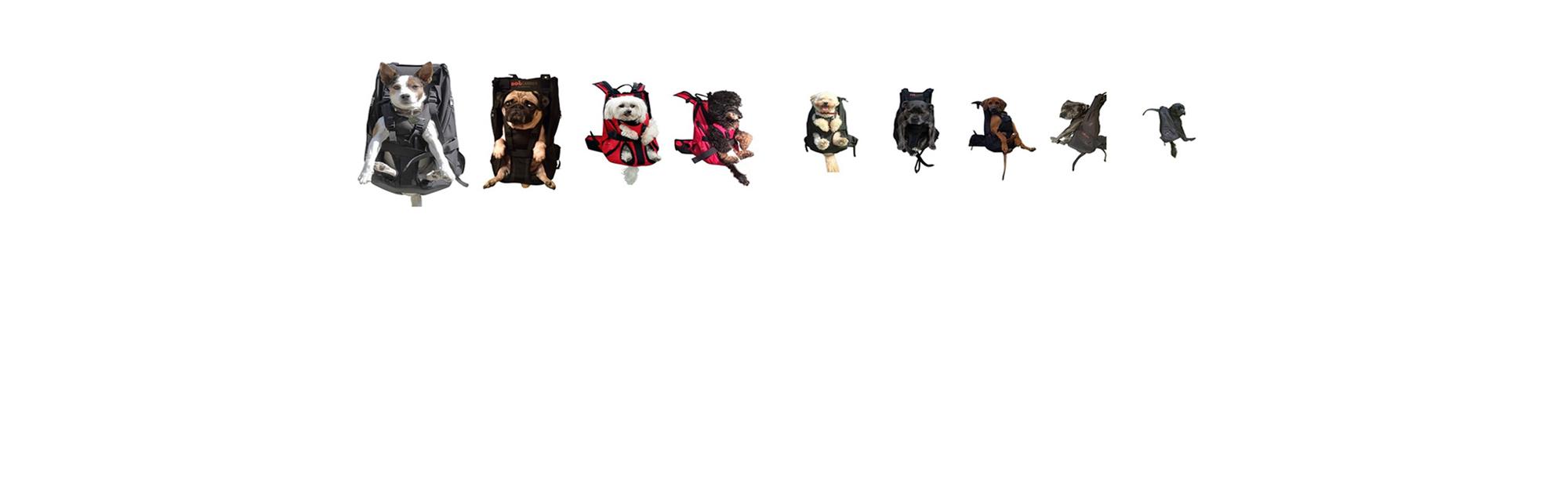 DogCarrier Hunderucksack
