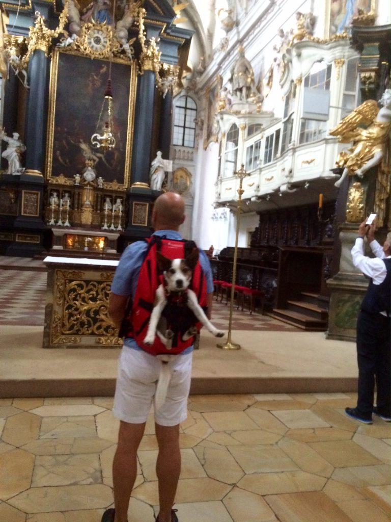 Hundetragerucksack von Dog Carrier
