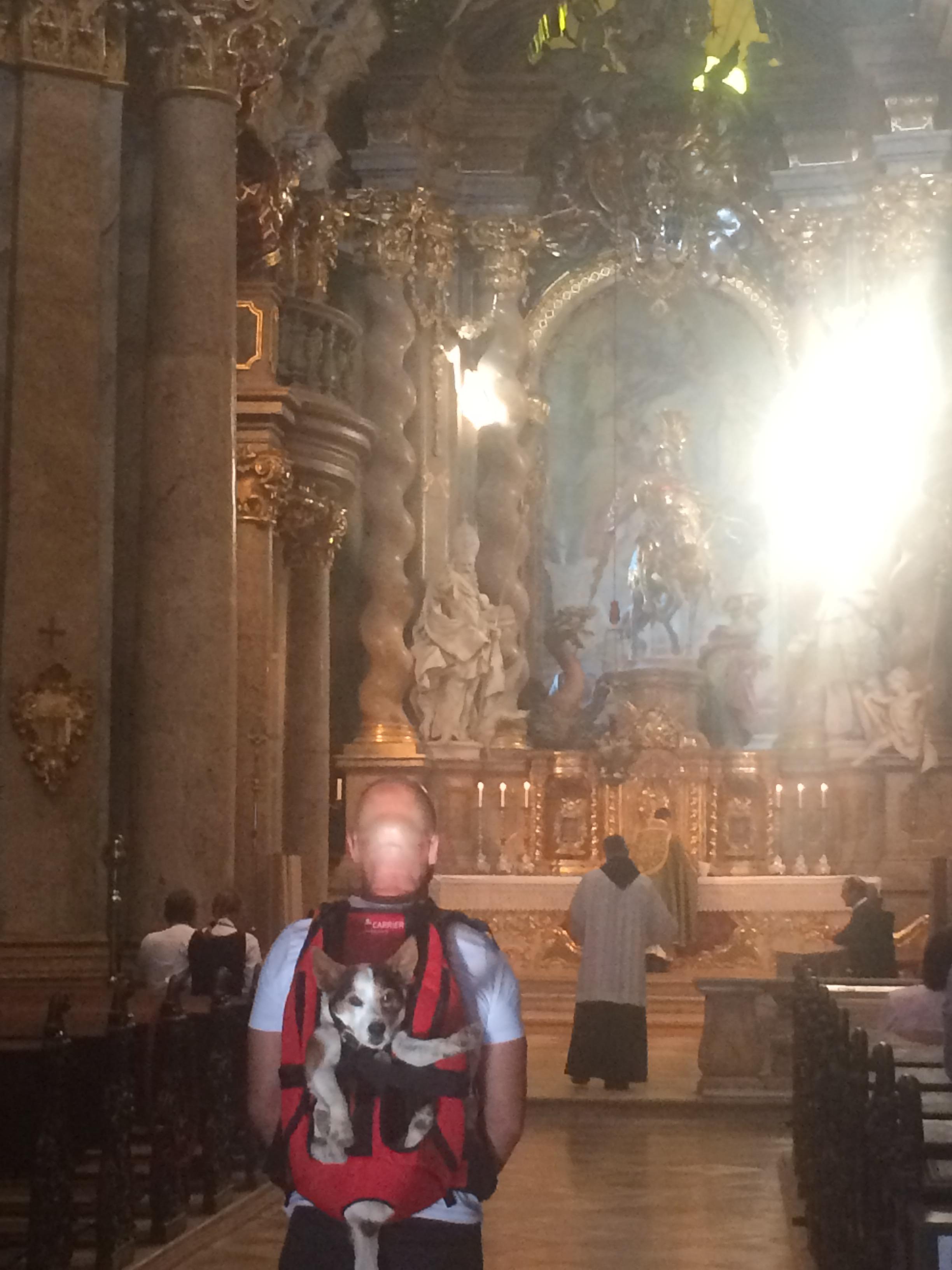 hund-katholische-messe
