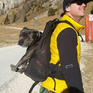 Hunderucksack für den Transport von Hunden