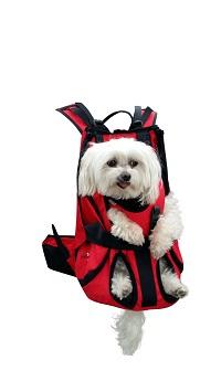Hundetragerucksack