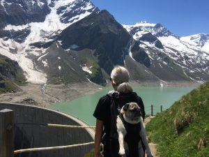 Hunderucksack im Alttag bzw. Urlaub