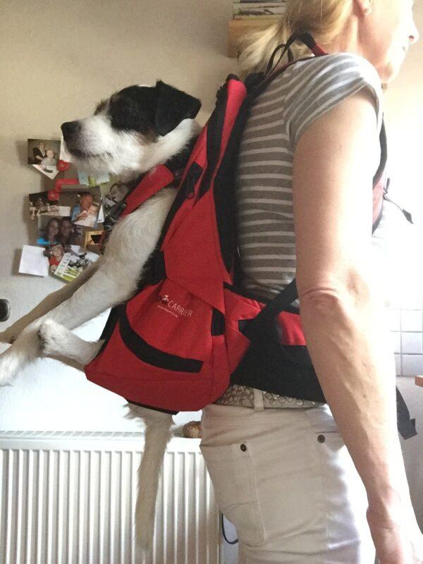 Hundetasche bzw/ Hundetrage , Hundebox zum Tragen von Hunden bis 30 kg Gewicht