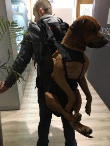XXL - Hunderucksack