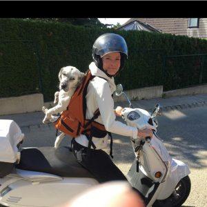 Hunderucksack von Dog Carrier