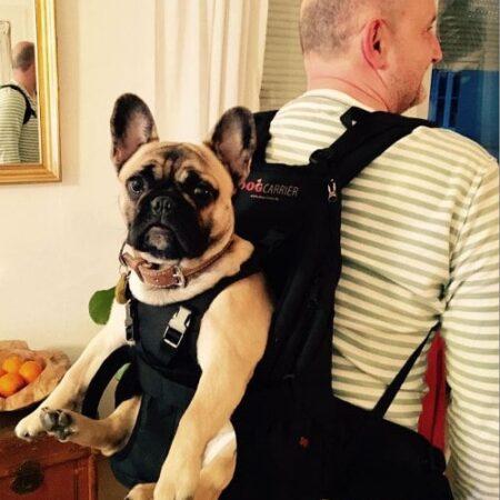 Hunderucksack für Hunde von 5-10kg