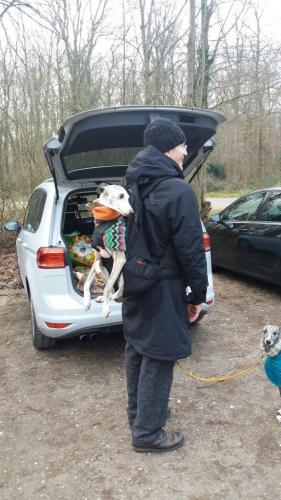 Hunderucksack #größter Hunderucksack # größte hundetrage #größte hundetragetasche #weltweit größter hunderucksack #großer Hunderucksack #große hundetrage #großer rucksack für hunde #größter rucksack für hunde