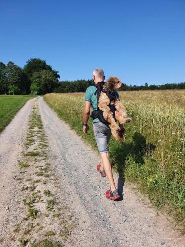 HundetascheBIG & SLIM Dog Carrier